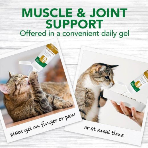 Vet's Best Muscle & Joint Support Gel for Cats