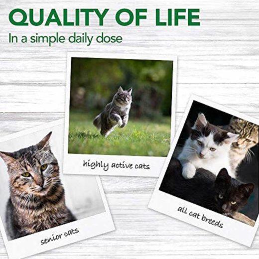 Vet's Best Multi System Support Gel for Cats