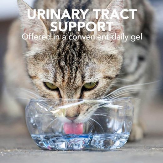Vet's Best Urinary Tract Support Gel for Cats