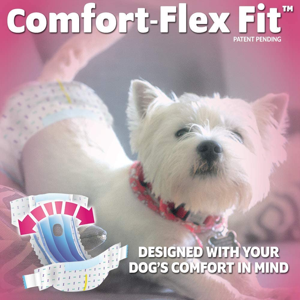 Out Petcare Fashion Disposable Diaper Medium 14 Daipers