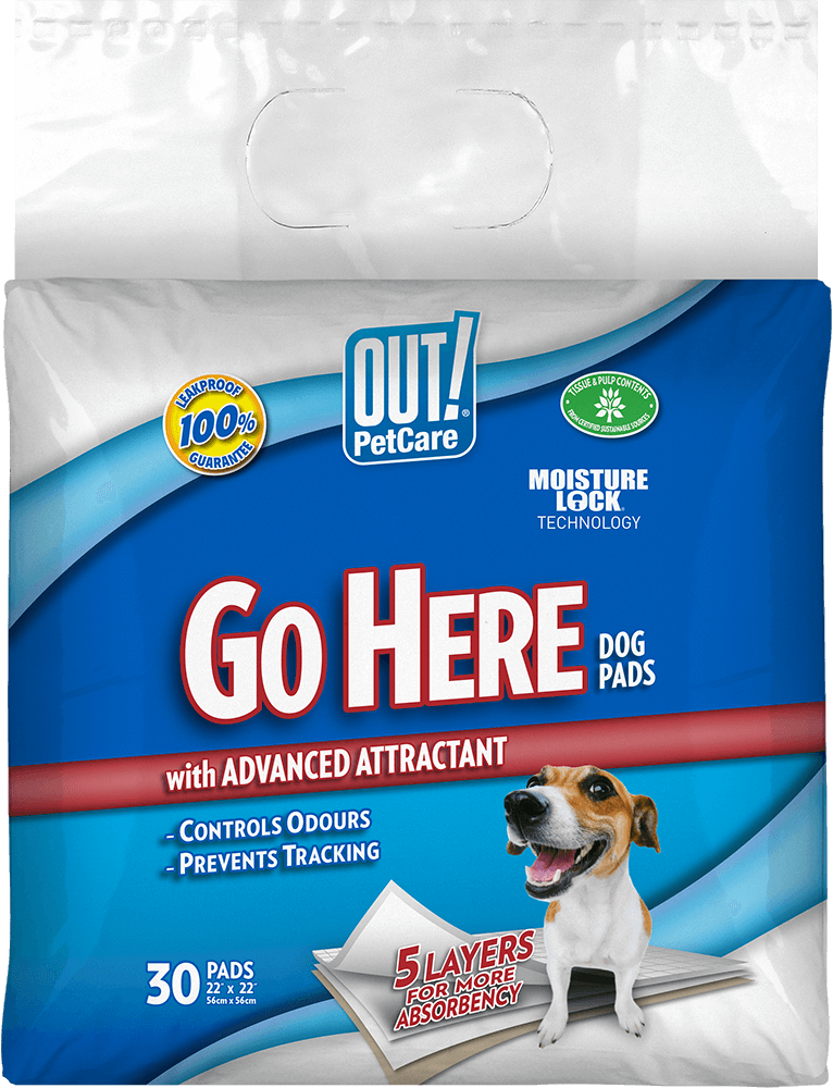 Out Petcare Moisture Lock Training Pads - 30 Pad Old Pack Design
